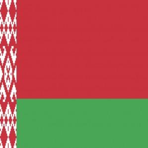 Distribütör Belarus - Araba mat temizleyici Wash-Mat