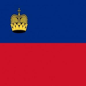 Distribütör Liechtenstein - Araba mat temizleyici Wash-Mat