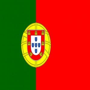 Distribütör Portekiz - Araba mat temizleyici Wash-Mat
