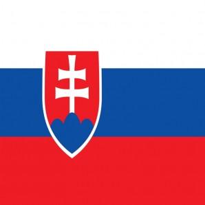 Distribütör Slovakya - Araba mat temizleyici Wash-Mat
