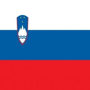 Distribütör Slovenya - Araba mat temizleyici Wash-Mat