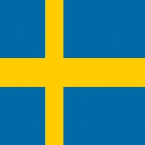 Distribütör İsveç - Araba mat temizleyici Wash-Mat